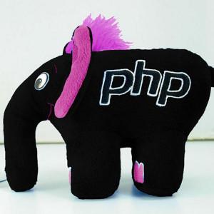 PhpStorm elephpant